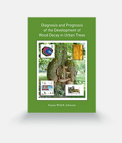 Diagnosis and Prognosis of the Development of Wood Decay