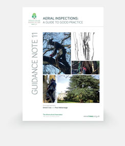 Aerial Inspections: Guide to Good practice